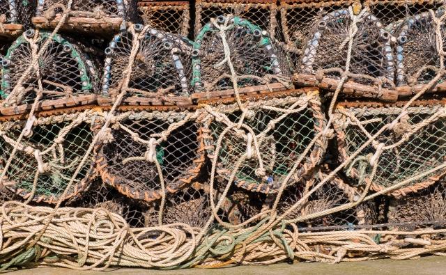 Lobster creels Arbroath